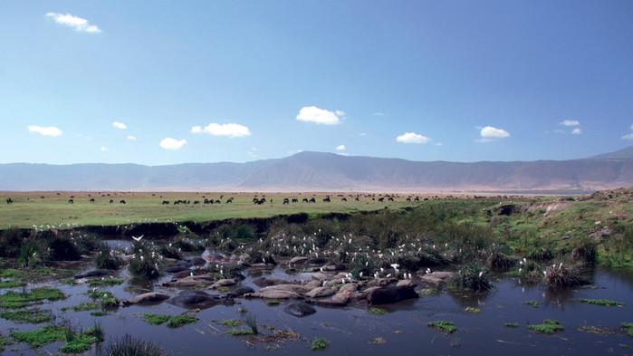 Den lille sjøen i Ngorongorokraterets bunn.